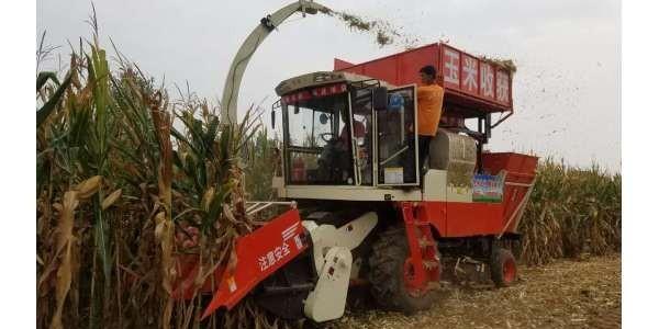 [国丰玉米收割机皮带]——联农提供完整的三角带型号