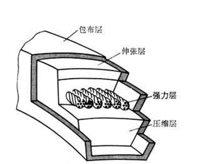 三角带内部结构