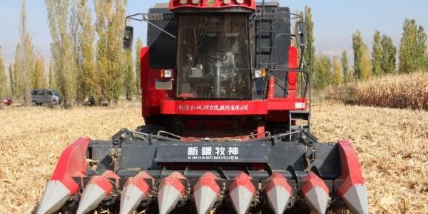 农业农村部:扩大第二轮土地承包再延长30年试点