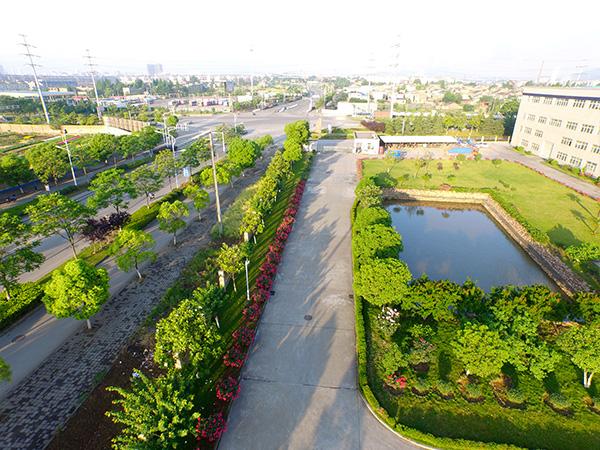 联农公司绿化